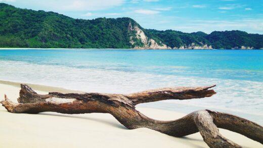 pantai tarimbang, Tempat Wisata Di Sumba Timur Paling Hits