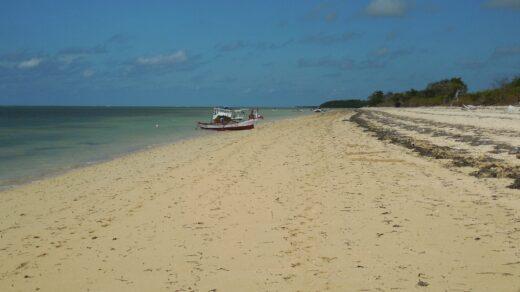 Garis Pantai Warambadi yang berpasir putih. Foto: Google Maps / Matthias Jungk