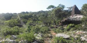 Kampung Wunga, perkampungan tertua di tanah Sumba. Foto: sumbatimurkab.go.id