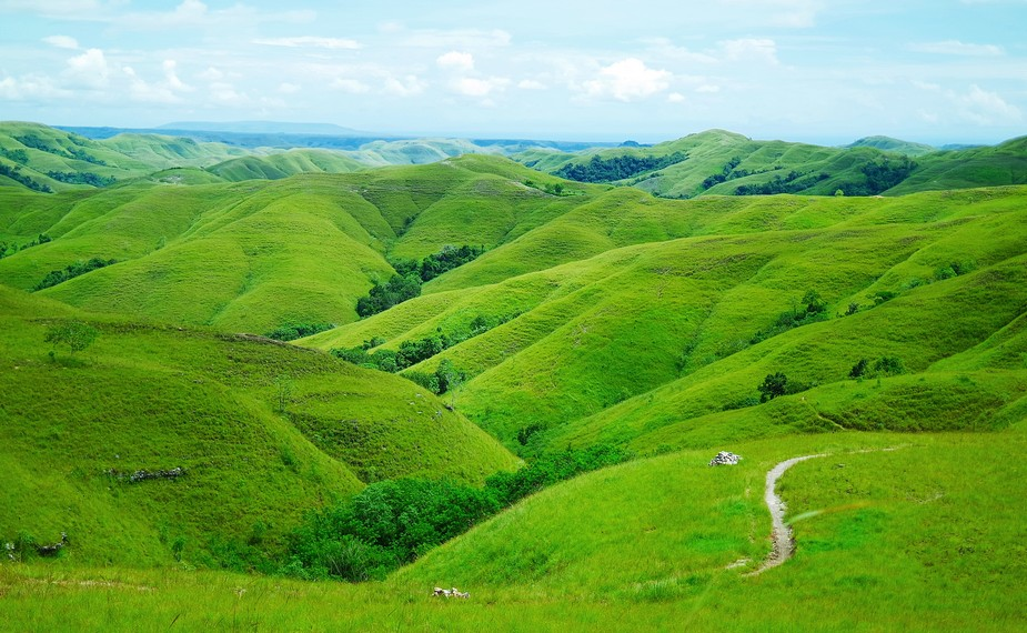 Honeymoon ke Sumba, kunjungi bukit warinding