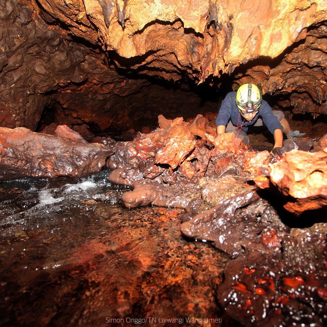 Gua Laikanggohuk Taman Nasional Matalawa